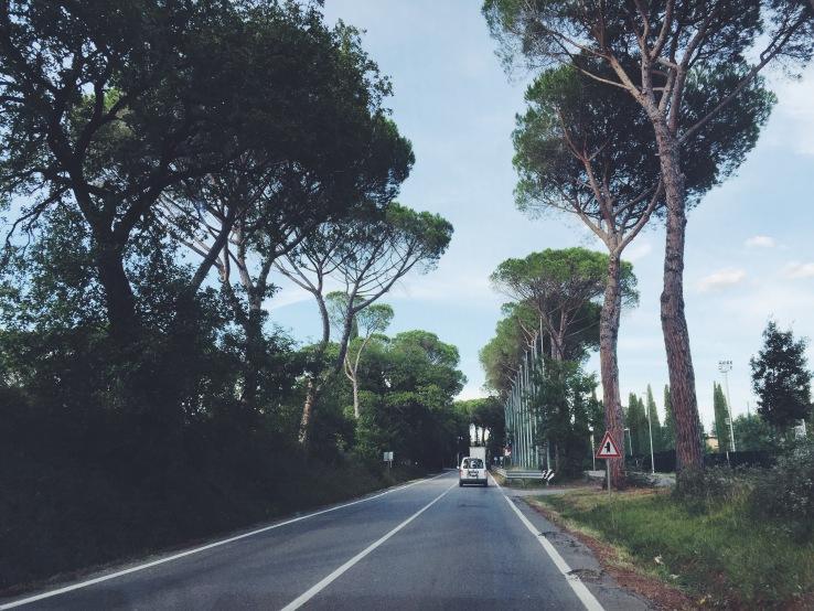 The road into Tuscany.